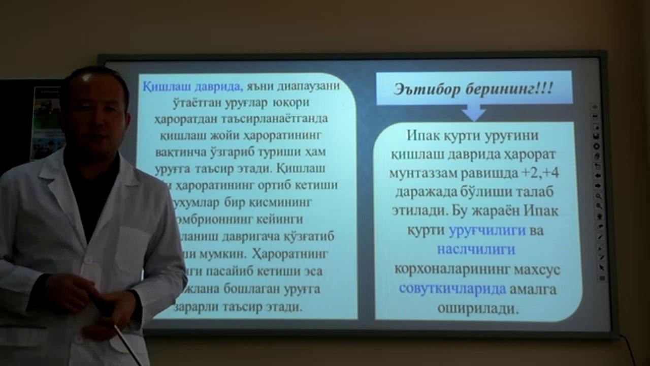 Urug` rivojlanishiga tashqi sharoitning tasiri va urug`ni jonlantirish usullari (3-Mavzu)